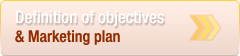 The definition of marketing objectives and plans